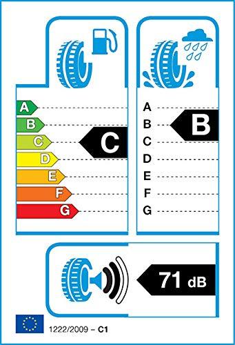 Gomme Imperial Ecosport 2 f205 245 40 R17 95W TL Estivi per Auto
