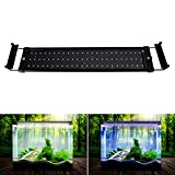 5 gallon aquarium light hood - NONMON LED Aquarium Lights, Fish Tank Light Hood with Extendable Brackets, White and Blue LEDs 50cm/19.6inch