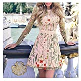 Usstore  Women's Mini Dress Lace Mesh Sleeve Summer Fashion Elegant Floral Embroidered Slim Party Double Layer Dress (XXL, Pink)