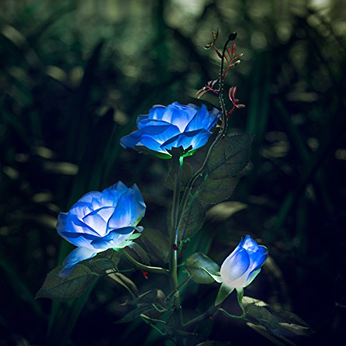 XLUX Outdoor Decorative Solar Rose LED Lights, Blue (Light Garden Solar Statue)