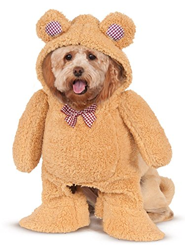 Walking Teddy Bear Pet Suit, Medium -
