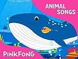 world animals baby einstein - Blue Whale
