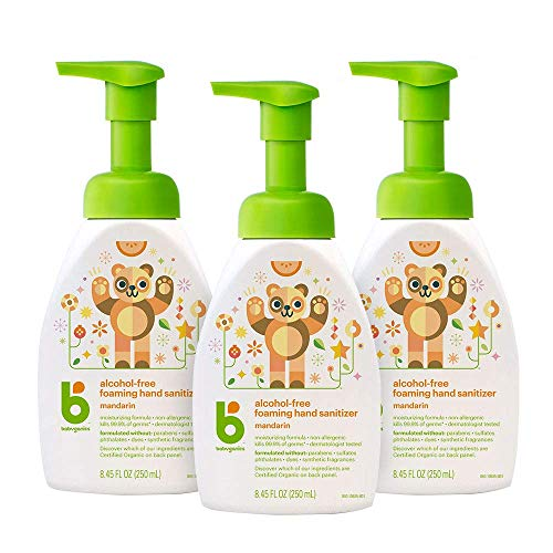 Babyganics Alcohol-Free Foaming Hand
