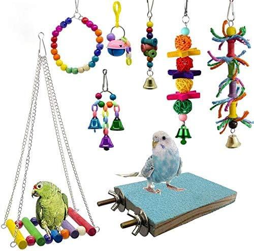 deloky-8-packs-bird-swing-chewing