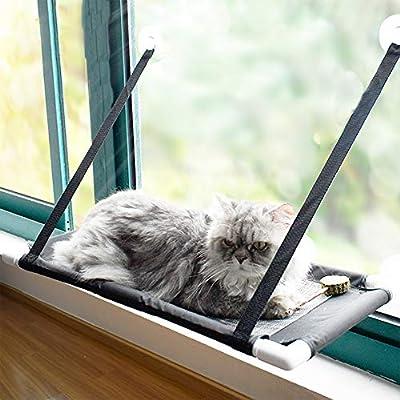Amazon.com: Lovinouse - Hamaca para ventana de gato, ahorro ...