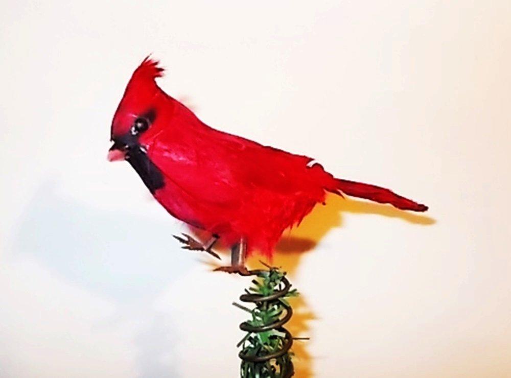 Cardinal Tree Topper