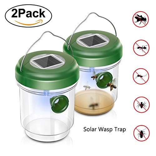 Wehome Solar Outdoor Wasp Trap Catcher Killer with Ultraviolet LED Light Set of 2,Traps Wasps, Bees, Yellow Jackets, Hornets, Bugs, Fly and More by WeHome