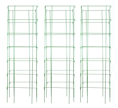 Burpee Extra Large Heavy Gauge Green Tomato 3 Cages | 18