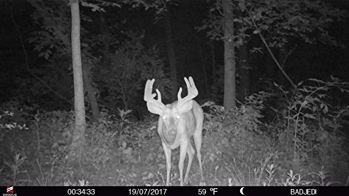 Exodus Lift II Trail Camera | .4 Second Trigger Speed, Black Flash Game Camera, Ultra HD Photos and Videos | Life's A Passion, Pursue It by Exodus Outdoor Gear (Image #8)