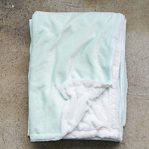 All the Feels | Extra Cozy Reversible Blanket | Super Soft | Machine Washable | Full/Queen | Color- Glacier Mint | You Buy One-We Give One