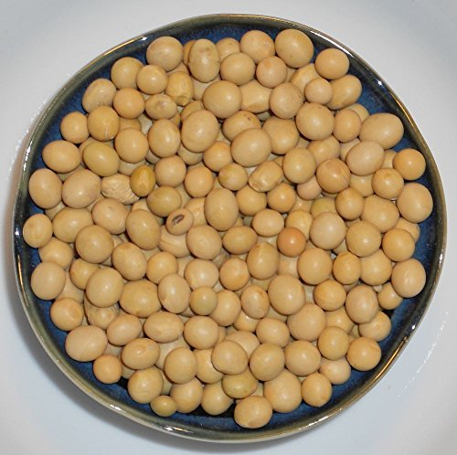- Soybeans for Soy Milk Tofu Sprouts - Non-GMO Soybean Certified Seed (1LB - 10LB)
