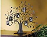 STUDIO SILVERSMITHS Bronze Metal Family Tree with 6 Hanging Picture Photo Frames