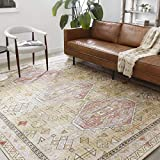 Loloi II SKY-04 Traditional Area Rug, 7'-6'' x 9'-6'', Gold/Blush