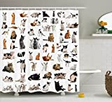 Ambesonne Cat Lover Decor Collection, Group of Cats and Kitten Lying Down Purebred Norwegian Siamese Tricolor, Polyester Fabric Bathroom Shower Curtain, 84 Inches Extra Long, Black White Mustard