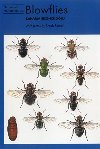 Blowflies (Naturalists
