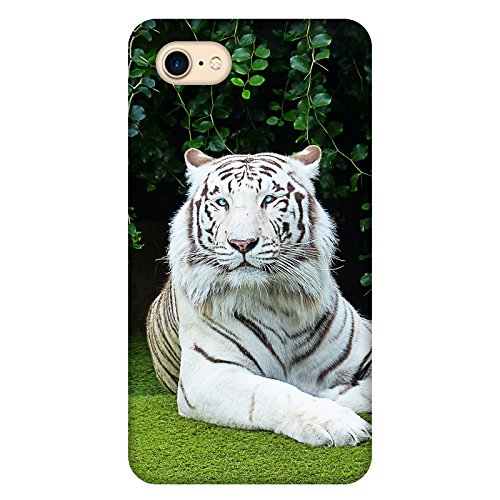 Coque Iphone 7 - Tigre-Bengale-Blanc