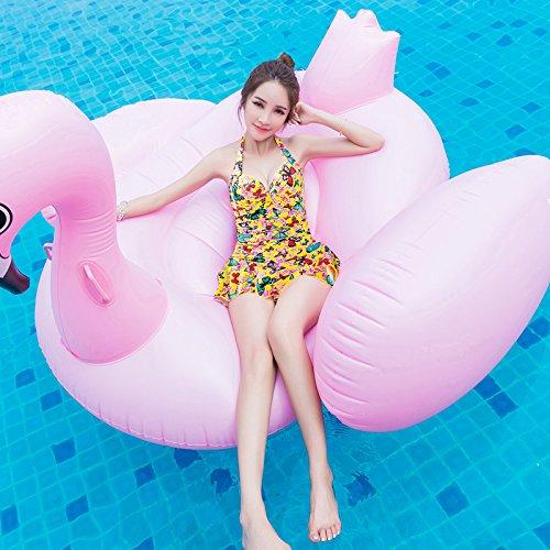 BUSL Konservativ Badeanzug weiblichen Badeanzug decken den Bauch sammeln kleine Brust große Brust Badeanzug Korea Kurort