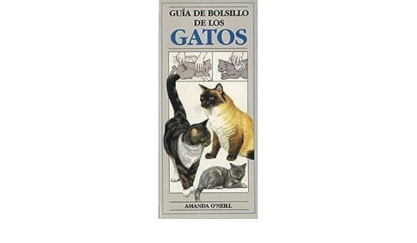Guía de bolsillo de los gatos: AMANDA ONEILL: 9788428209571: Amazon.com: Books