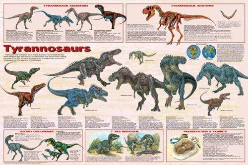 dinosaur chart poster