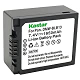 Panasonic DMW-BLB13 Battery for G10K, G1K, G2K, GF1, GF1C, GF1K, GH1K Panasonic Micro Four Thirds Cameras - Retail Packaging