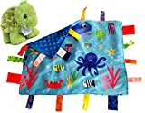 Lovey Baby Tag Minky Dot Blanket Bundle with Precious Moments Plush (Ocean / Zippy Turtle)