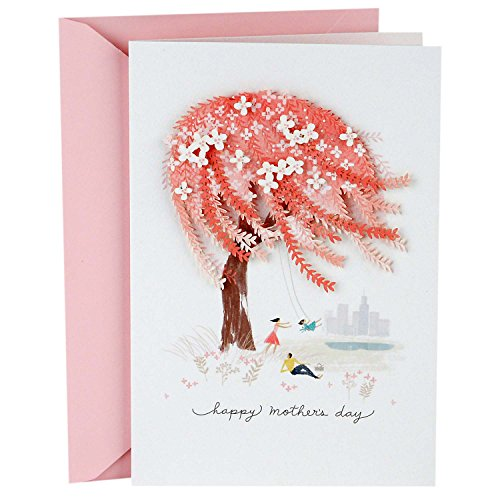 Hallmark Signature Mother's Day Love Greeting Card (For All You Do for Our Family)