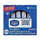 Nice 'N Clean Anti-Bacterial Hand Wipes Kills