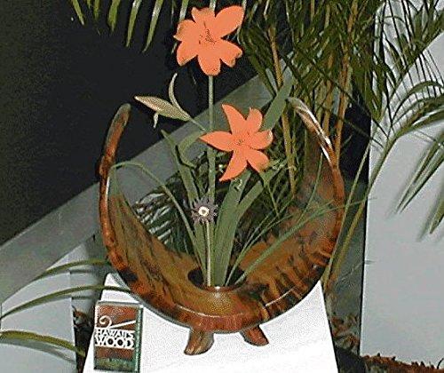 JWL Kenzan Ikebana Black Color Water Holding Flower Arranger Pin Frog 1.875 Inch Tapered Cup - (12) Included by JWL Hawnkoa (Image #5)