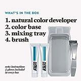 JUST FOR MEN Mustache & Beard Brush-In Color
