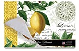 Cala Home 24-Pack Disposable Paper Placemats, Citron