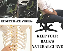 FOMI Lumbar Mesh Back Support for Car and Office Chair. Alleviates Lower Back Pain & Promotes Healthy Posture, Corrects Spinal Alilgnment. Breathable, Massage Bead for Extra Comfort, Elastic Tension.