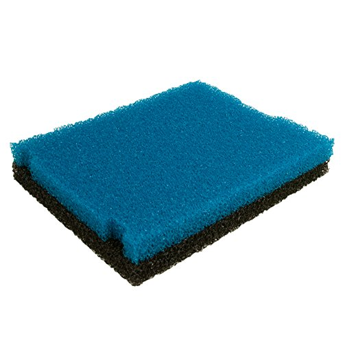 Tetra Multi Colored Replacement Foam Flat Box Filter by Tetra