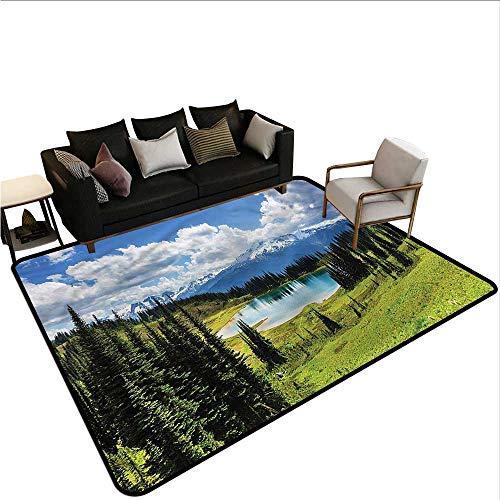 Landscape,Bathroom Floor mats 60