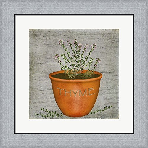 Herb Thyme by Beth Albert Framed Art Print Wall Picture, Flat Silver Frame, 19 x 19 (Thyme Framed)
