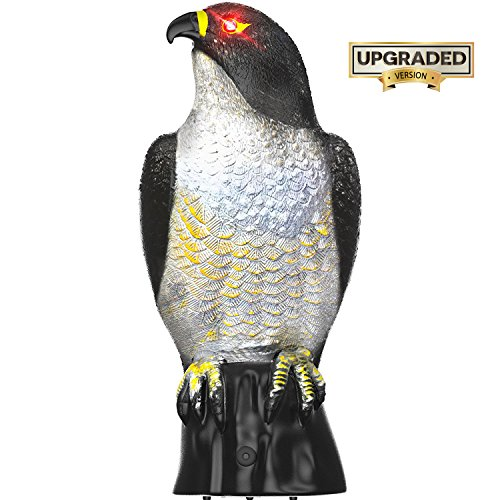 Hoont Garden Scarecrow Eagle Decoy with Scary Flashing Eyes and Frightening Sound Pest Repellent – Motion Activated and Solar Powered – Realistic Predator Repels Birds, Squirrels, Etc. [UPGRADED]