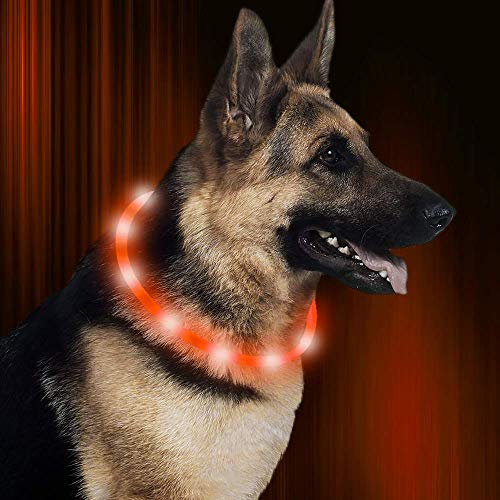 Famolay Rechargeable Resistant Flashing Necklace