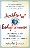 Accidental Enlightenment, Stephen Banick, 1933538635