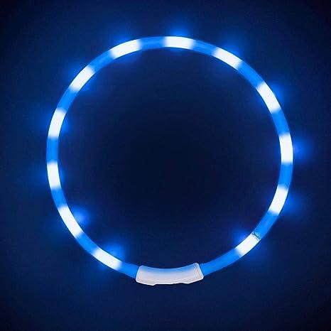 LaRoo LED Collar para Perros, LED Collar de Seguridad para Perros Mascotas de LED Luminous Que Brilla en la Noche Brillante Collar para Perros, Gatos ...