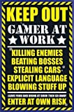 1art1 Gaming Poster and Frame (Plastic) - Keep Out, Gamer At Work (36 x 24 inches)