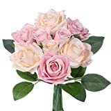 Flowers - Best Reviews Guide