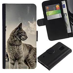 KLONGSHOP / Tirón de la caja Cartera de cuero con ranuras para tarjetas - Cat Shorthair House Pet Blue Grey Cute Kitten - Samsung Galaxy S5 V SM-G900