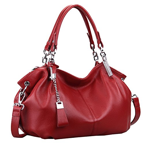 - Heshe Womens Leather Handbags Ladies Designer Purse Tote Bag Top Handle Bag Hobo Bag Shoulder Bag Cross Body Bag (Wine)