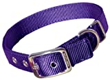 Hamilton Double Thick Nylon Deluxe Dog Collar, 1-Inch by 22-Inch, Purple, My Pet Supplies
