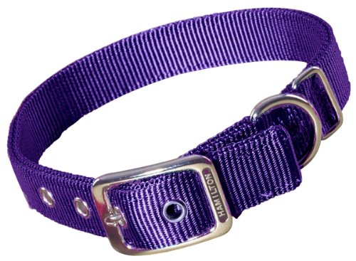 Purple Dog Dog Collar - Hamilton Double Thick Nylon Deluxe Dog Collar, 1-Inch by 22-Inch, Purple