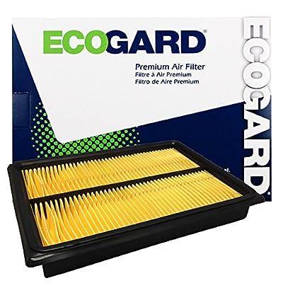 Ecogard XA4675 Air Filter: Automotive