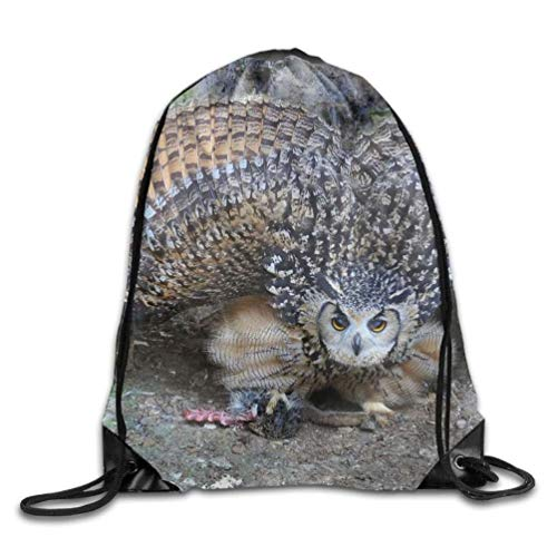 YINREN Animal Burrowing Owl Unisex Home Gym Sack Bag Travel Drawstring Backpack Bag