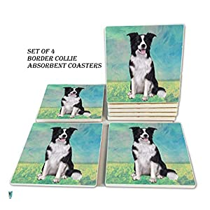 Border Collie Coasters - Moisture Absorbing Stone Coasters with Cork Base, Prevent Furniture from Dirty and Scratched, Stone Coasters set Suitable for Kinds of Mugs and Cups, Set of 4 16