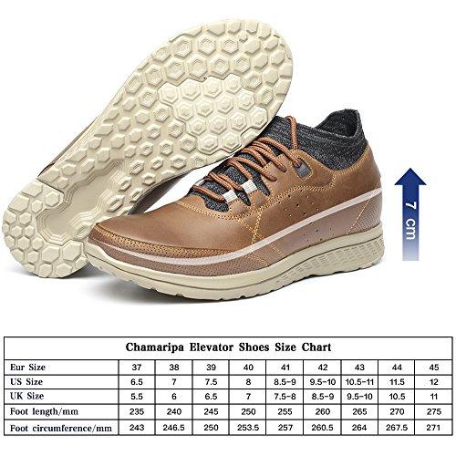 CHAMARIPA Sneaker Scarpe da Sera con Rialzo da Uomo Pelle Che Aumentano l¡¯Altezz Fino a 7 cm - H81C83K021D Marrone Explorar En Venta Salida En Línea Barato w2jgm