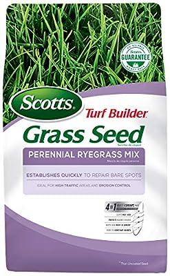 Scotts Turf Builder Grass Seed - Perrenial Ryegrass Mix