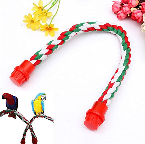 mkki Colorful Fashion Parrot Bird Toys Decorative Pet Bird Parrot Standing Rope Cockatiel Parakeet Conure Cage Swing Perch Toy by mkki (Image #2)